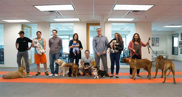 Lleva a tu perro a la oficina.