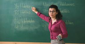 maestro en la SEP